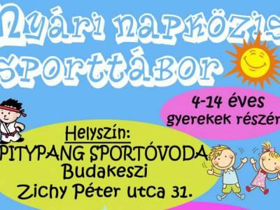 Nyári napközis sporttábor 4-14 éveseknek Budakeszin (nem csak karatésoknak!)